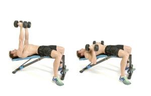 3-dumbbell-bench-press-programma-fitness-hitech-sport